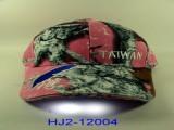 HJ2-12004-25.JPG